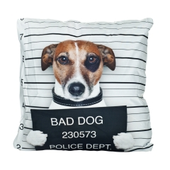 Pillow bad dog