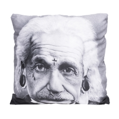Pillow einstein