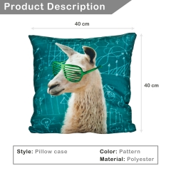 Pillow math lama